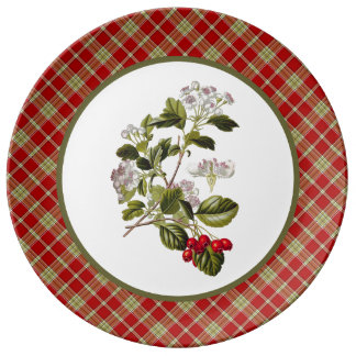 Vintage Hawthorn with Rustic Red and Green Plaid Plate
