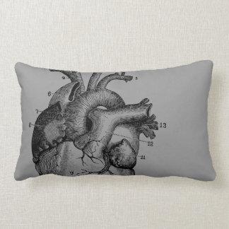 Vintage Heart - anatomy Throw Pillows