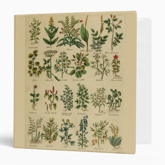 Vintage Herbal Binder