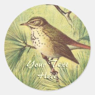 Vintage Hermit Thrush Stickers