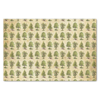 Vintage Holiday Trees Pattern Tissue Paper