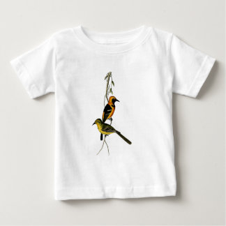 Vintage Hooded Oriole Bird Baby T-Shirt