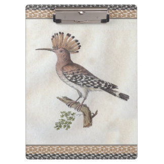 Vintage Hoopoe Engraving Clipboard