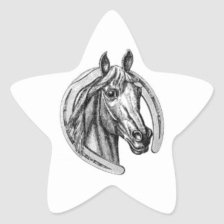 Vintage Horse and Horseshoe Star Stickers