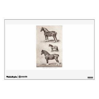 Vintage Horse Clydesdale Shetland Belgian Horses Wall Sticker