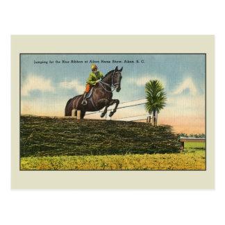 Vintage Horse Jumping Aikin SC Postcard