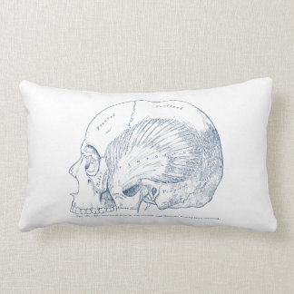 Vintage Human Anatomy Drawing Temporal Muscle Blue Lumbar Pillow