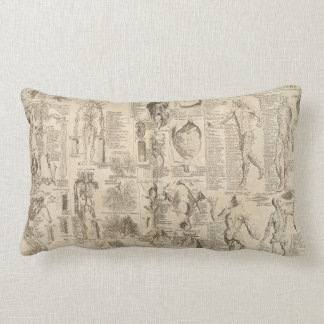 Vintage human anatomy pillow
