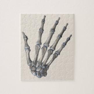 Vintage Human Anatomy Science, Skeleton Hands Jigsaw Puzzle
