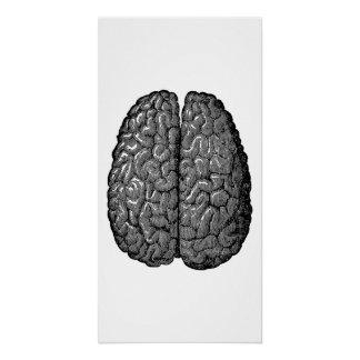 Vintage Human Brain Illustration Perfect Poster