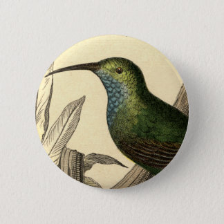 Vintage Hummingbird Button