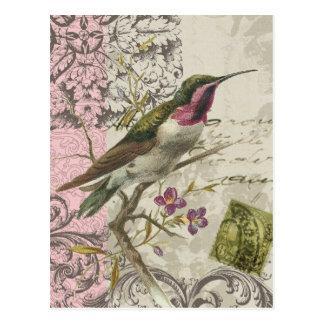Vintage Hummingbird...postcard