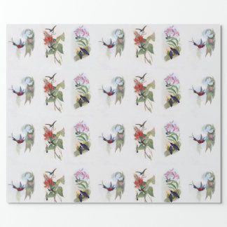 Vintage Hummingbird Wrapping Paper