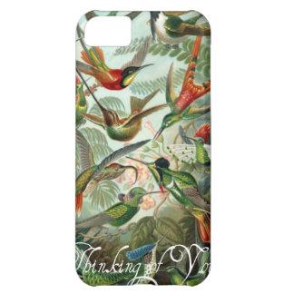 Vintage Hummingbirds IPod Case Case For iPhone 5C