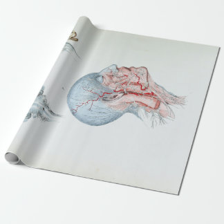 Vintage Illustration Anatomy Human Head and Eyes Wrapping Paper