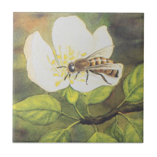 Vintage Illustration : Bee On A White Flower Tile