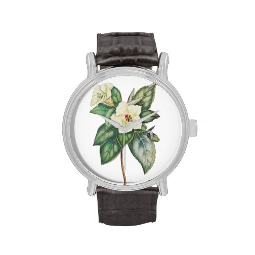 Vintage Illustration Of A White Flower Wristwatches
