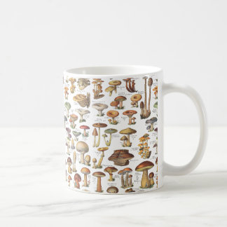 Vintage illustration of mushrooms coffee mug