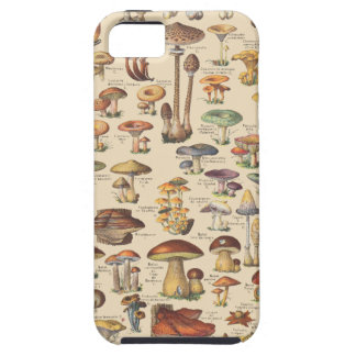 Vintage illustration of mushrooms iPhone 5 covers