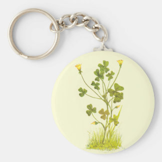 Vintage Illustration of the Yellow Wood-Sorrel Basic Round Button Keychain
