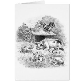 Vintage Illustration - Pigs in the Straw, Card