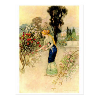 Vintage Illustration Postcard