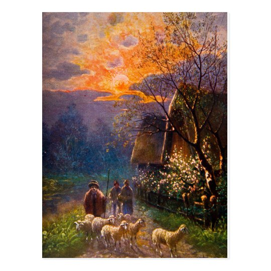 Vintage Illustration, Sheep Herding At Night Postcard
