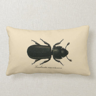 Vintage Insect Entomology Reversible Cotton Lumbar Lumbar Pillow