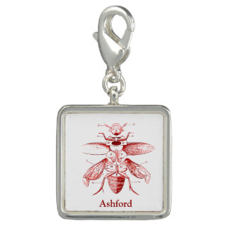 Vintage Insect Image | Beetles | Red Charm