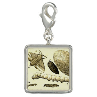 Vintage Insect Image | Silkworm | Moth Photo Charms