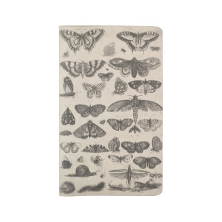 """Vintage Insects Butterfly Field Notes 8.5 x 5.25"""" Large Moleskine Notebook"""