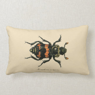 Vintage Insects Entomology Reversible Lumbar Lumbar Pillow