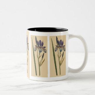 Vintage Iris Mug