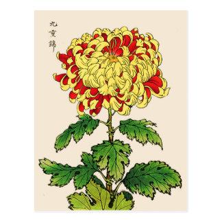 Vintage Japanese Chrysanthemum. Mustard Yellow Postcard
