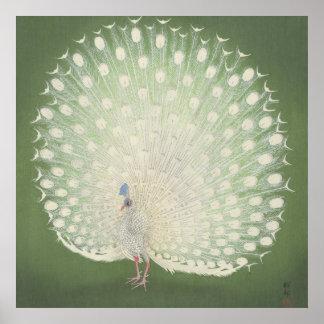 Vintage Japanese Fine Art | Peacock Poster