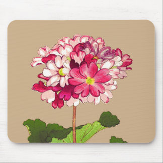 Vintage Japanese Hydrangea. Pink and Green Mouse Pad