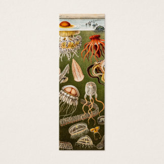 Vintage Jellyfish Antique Jelly Fish Illustration Mini Business Card