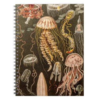 Vintage Jellyfish Antique Jelly Fish Illustration Spiral Notebook