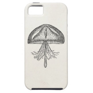 Vintage Jellyfish Antique Jellyfishes Template Case For The iPhone 5