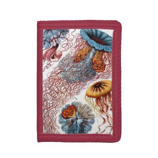 Vintage Jellyfish by Ernst Haeckel, Discomedusae Tri-fold Wallet