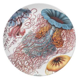 Vintage Jellyfish Marine Life Dinner Plate
