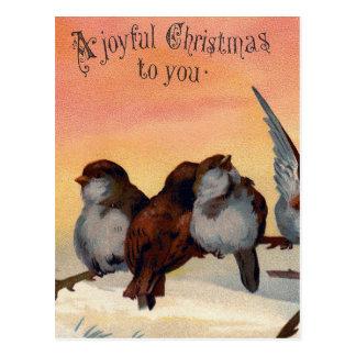 Vintage Joyful Christmas Birds Postcard