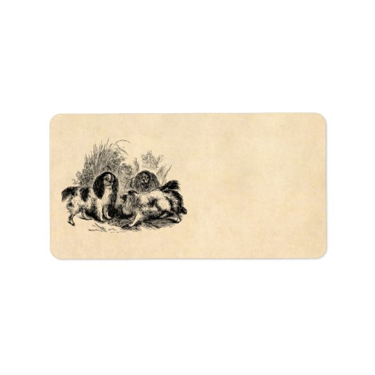 Vintage King Charles Spaniel Dog 1800s Spaniels Label
