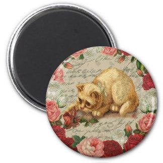 Vintage kitten 2 inch round magnet