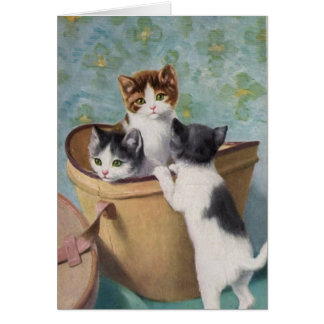 Vintage Kittens in a Hat Box, Card