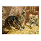 Vintage Kitty Cats - Victorian Cat Art Postcard