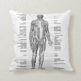 Vintage - Labelled Human Anatomy Muscles Throw Pillow
