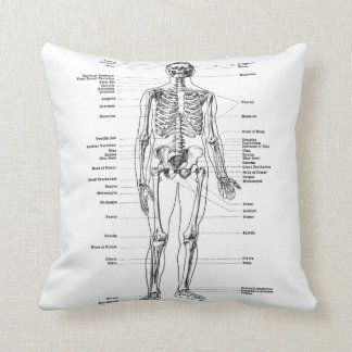 Vintage - Labelled Skeleton - Front and Back Throw Pillow