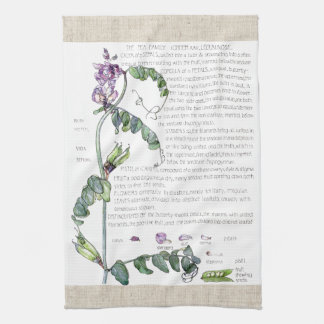 Vintage Lathyrus Pea Flowers Kitchen Towels