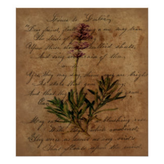 Vintage Lavender on Distressed Writing Paper Poster